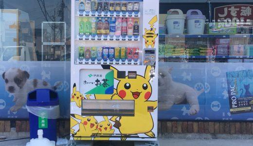 昆陽南のペットショップ前の自動販売機がポケモンの「ピカチュウ」だらけ。【マチノワフォト】