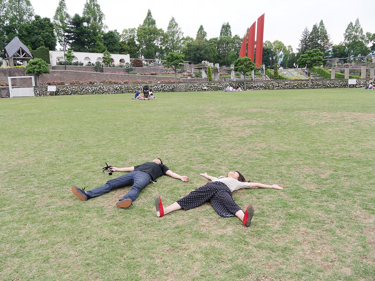 荒牧バラ公園の芝生、昼寝をするレオとおでん