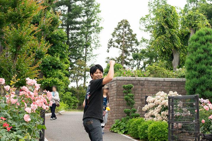 現在のバラの開花状況を写真つきレポ!【6月上旬】